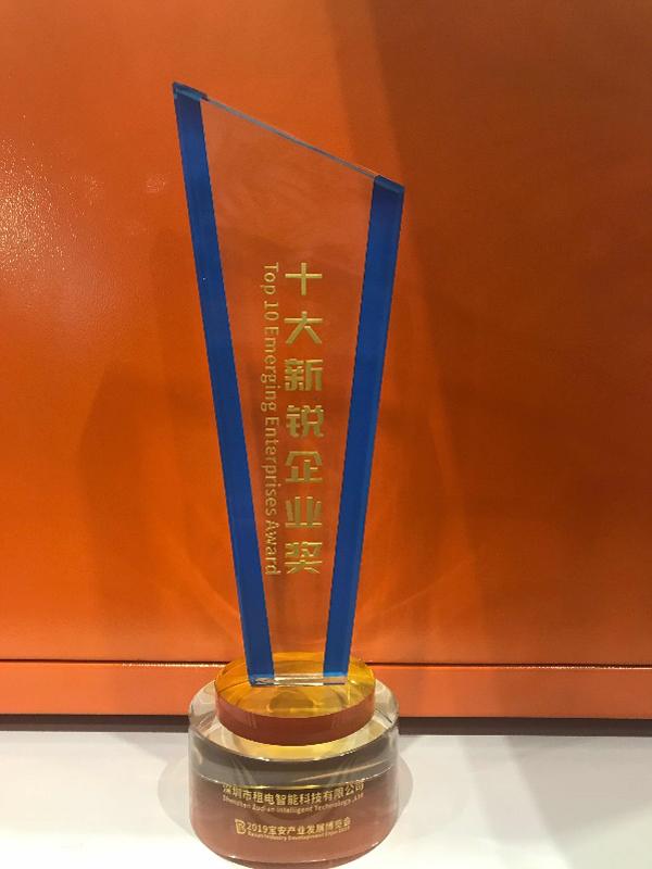 租电荣获深圳宝安十大新锐企业奖奖杯